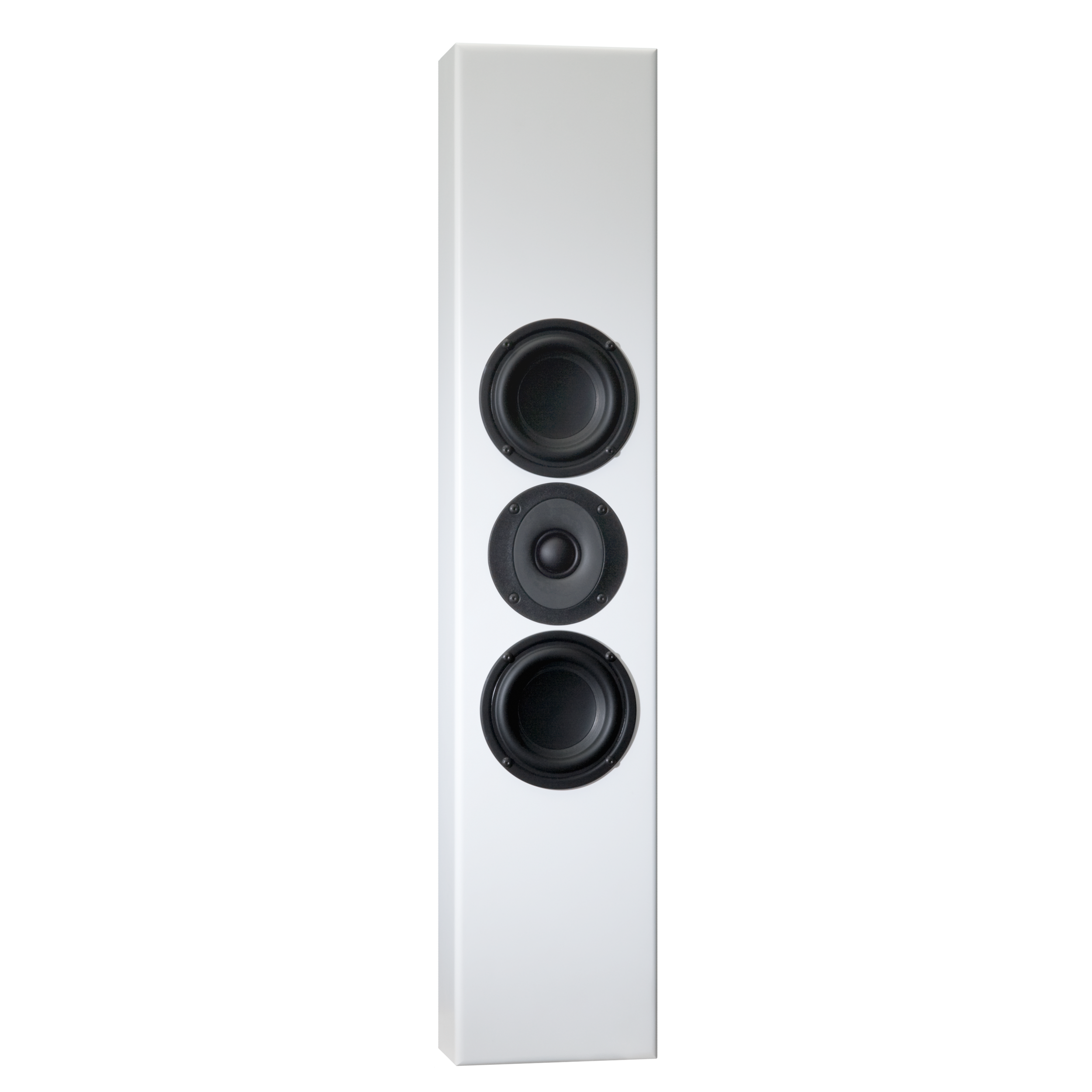 Totem Tribe Ii Wide Screen Audio